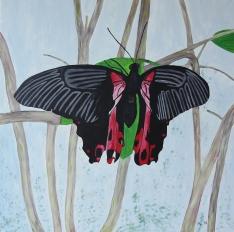 Schmetterling 90 cm x 90 cm